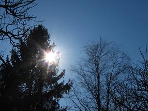 2014_04_20_Aurinko ja puut siluetit_PHA_IMG_5896