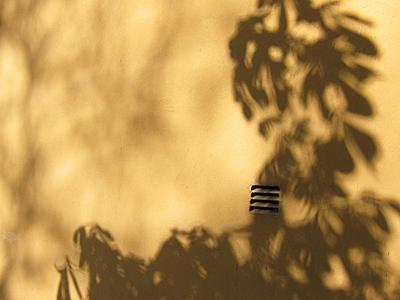 2014_05_20_Puun varjo seinustalla_PHA_IMG_6509