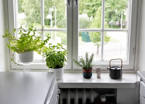 2015_07_Kitchen window_PHA_MG_3218